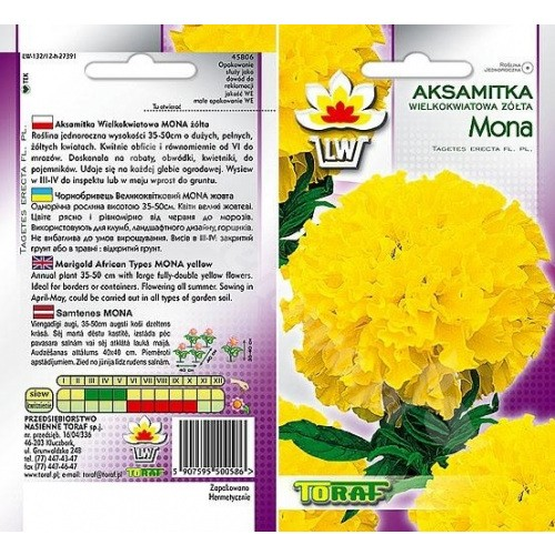 Nasiona Aksamitka Mona żółta Toraf
