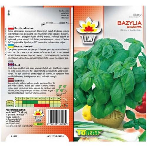 Nasiona Bazylia Pospolita Toraf
