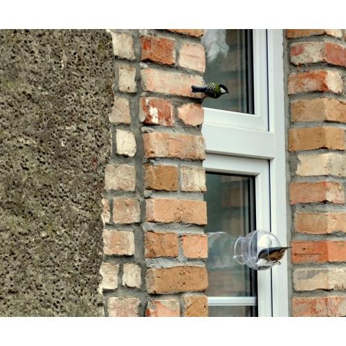 Karmnik dla Ptaków Na Szybę Mały Ornitolog