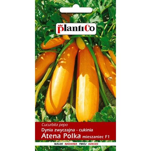 Dynia Zwyczajna Cukinia Atena Polka 2g PlantiCo