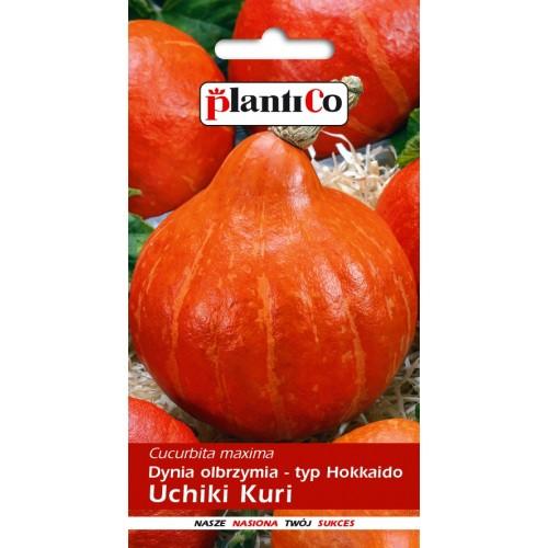 Dynia Olbrzymia Uchiki Kuri 3g PlantiCo
