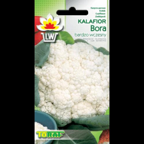Nasiona Kalafior Bora Toraf