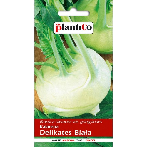 Kalarepa Delikates Biała 2g PlantiCo