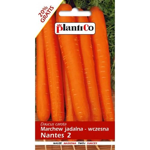 Marchew Jadalna Nantes 2 6g PlantiCo