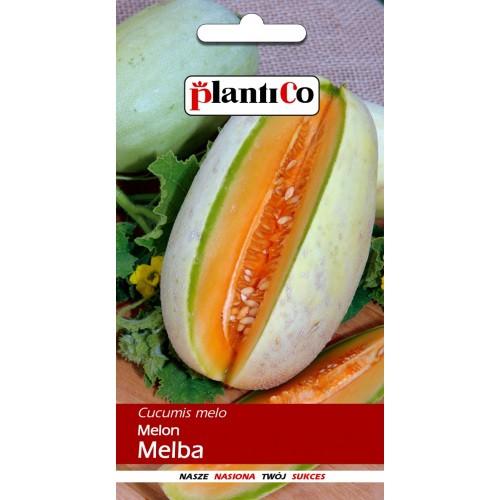 Melon Melba 1g PlantiCo