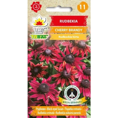 Nasiona Rudbekia Cherry Brandy Toraf