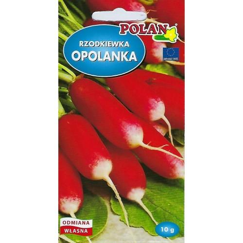 Rzodkiewka Opolanka Nasiona 10g Polan