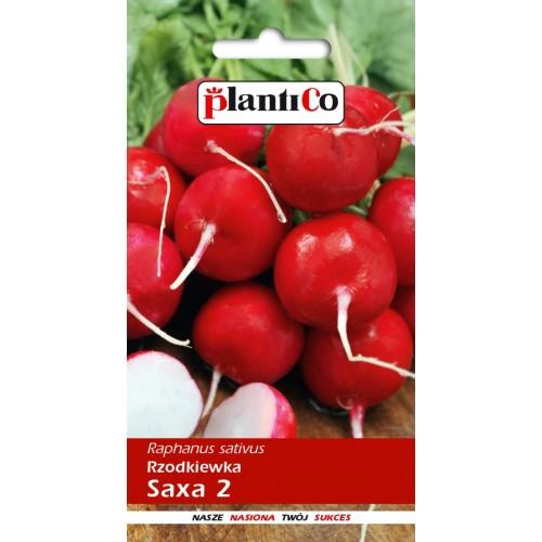 Rzodkiewka Saxa 2 10g PlantiCo