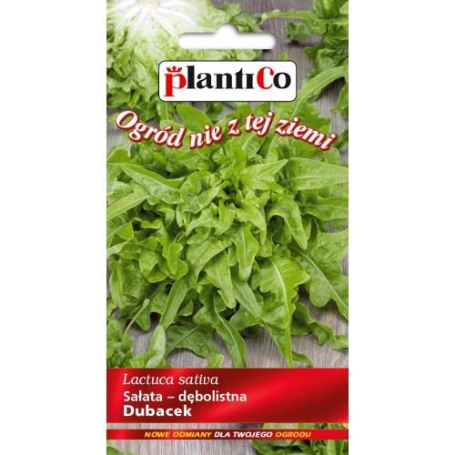 Sałata Dębolistna Zielona Dubacek 0,5g PlantiCo