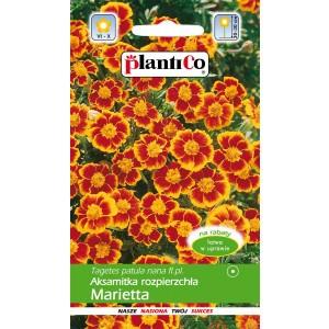 Aksamitka Rozpierzchła Marietta 1g PlantiCo
