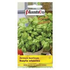 Bazylia Właściwa 1g PlantiCo