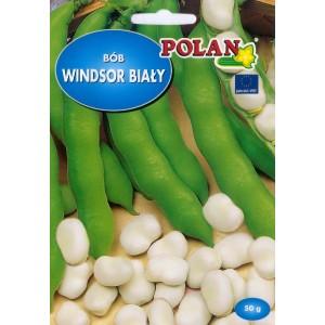 Nasiona Bób Windsor Biały 50g PlantiCo
