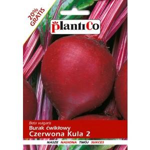 Burak Ćwikłowy Czerwona Kula 2 12g PlantiCo