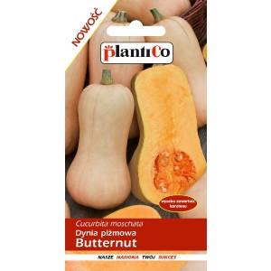 Dynia Piżmowa Butternut 2g PlantiCo