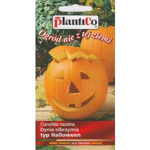 Dynia Olbrzymia Big Max Typ Halloween 2g PlantiCo