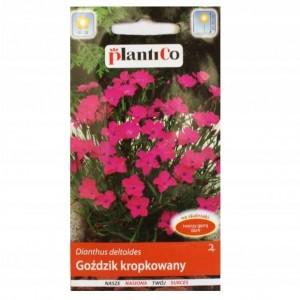 Nasiona Goździk Kropkowany Czerwony 0,5g PlantiCo