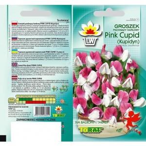 Nasiona Groszek Pachnący Pink Cupid Kupidyn Toraf