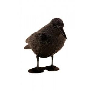 Kruk Duży Odstraszacz Ptaków, Gołębi, Szpaków