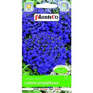 Lobelia Przylądkowa Fioletowa 0,2g PlantiCo