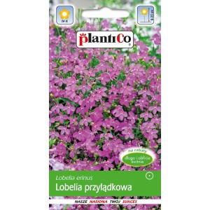 Lobelia Przylądkowa Różowa 0,2g PlantiCo