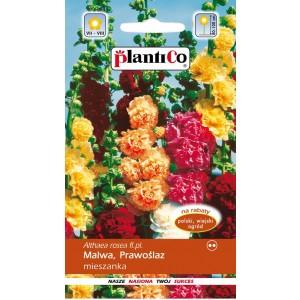Malwa Ogrodowa Chaters Mix 1g PlantiCo