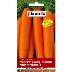 Marchew Jadalna Amsterdam 3 PlantiCo 5g