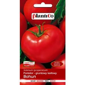 Pomidor Gruntowy Bohun 1g PlantiCo