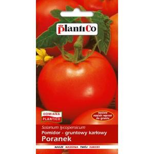 Pomidor Gruntowy Poranek 1g PlantiCo