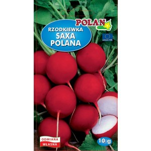 Rzodkiewka Saxa Polana Nasiona 10g Polan