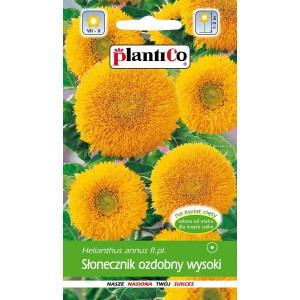Słonecznik Ozdobny Heliathus Wysoki 2g PlantiCo