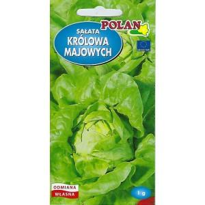 Sałata Masłowa Królowa Majowych Nasiona 1g Polan