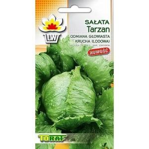 Nasiona Sałata Krucha Lodowa Tarzan Toraf