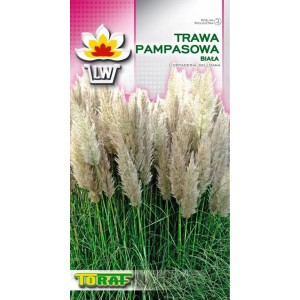 Nasiona Trawa Pampasowa Biała Toraf