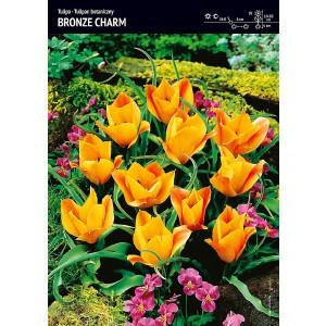 Tulipan Bronze Charm 5szt