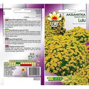 Nasiona Aksamitka Lulu Wąskolistna Toraf