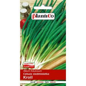 Cebula Siedmiolatka Kroll 2g PlantiCo