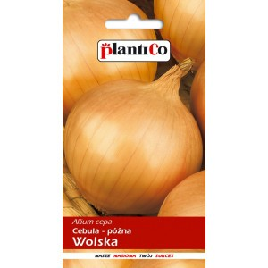 Cebula Wolska TOR 5g PlantiCo