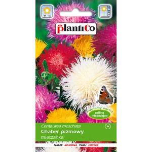 Nasiona Chaber Piżmowy 1g PlantiCo