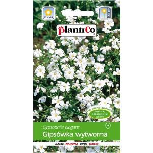 Gipsówka Wytworna Biała 1g PlantiCo
