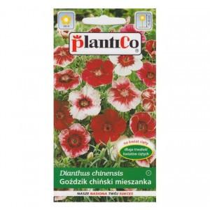 Goździk Chiński Mix 1g PlantiCo