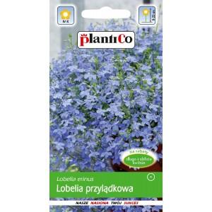 Lobelia Przylądkowa Niebieska - Arletka 0,2g PlantiCo