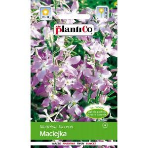 Maciejka 0,5g PlantiCo