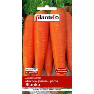 Marchew Jadalna Blanka 5g PlantiCo