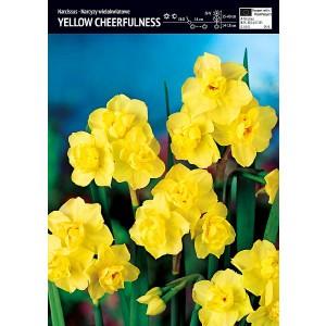 Narcyz Yellow Cheerfulness Cebulka 5szt
