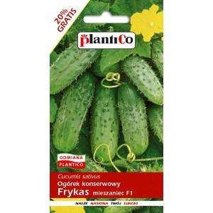 Ogórek Gruntowy Frykas 6g PlantiCo