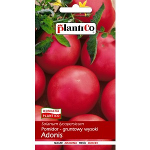 Pomidor Gruntowy Adonis 0,5g PlantiCo