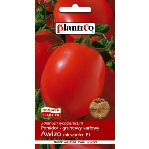 Pomidor Gruntowy Awizo 0,5g PlantiCo