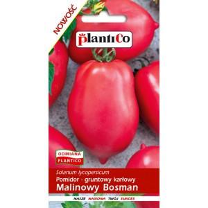 Pomidor Gruntowy Malinowy Bosman 0,5g PlantiCo
