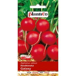 Rzodkiewka Galaxy 10g PlantiCo