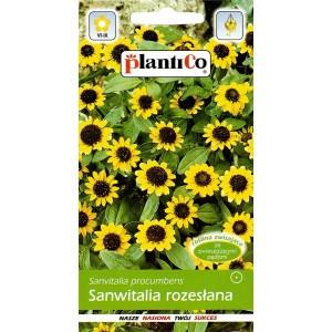 Nasiona Sanwitalia Rozesłana 0,5g PlantiCo